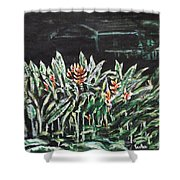 Heliconia 3 Shower Curtain