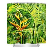 Heliconia 8 Shower Curtain