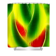 Heliconia Stem In Costa Rica Shower Curtain