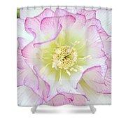 Hellebore Blossom  Shower Curtain