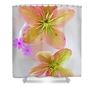 Hellebore Flower Art Shower Curtain
