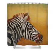 Hello Africa Shower Curtain