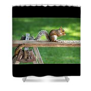 Hello Are You Gonna Eat All That? Chipmunk And Squirrel Shower Curtain