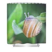 Hello Life Shower Curtain