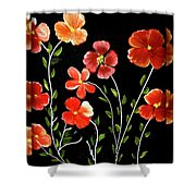 A Gift For Mom Shower Curtain
