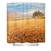 Hello Namibia Shower Curtain