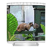 Hemmingway Cats Shower Curtain