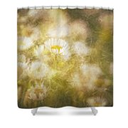 Her Beauty Alone Shower Curtain