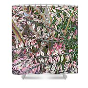 Her Gown Shower Curtain by Eikoni Images