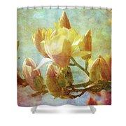 Herald Spring 8878 Idp_2 Shower Curtain