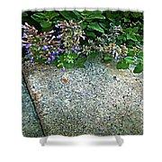 Herb Garden Walkway Shower Curtain