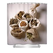 Herbal Teas And Seeds Shower Curtain