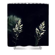 Herbs In Light With Fern Shower Curtain