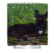 Hercules Shower Curtain by Sharon E Allen