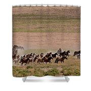 Herd On The Move Shower Curtain