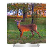 Here And Gone Shower Curtain