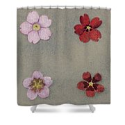 Heredity In Primula Sinensis, Mendel Shower Curtain