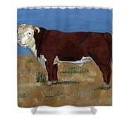 Hereford Shower Curtain