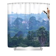 Here's Looking At You Kid.  Giraffe In Kenya Africa Shower Curtain