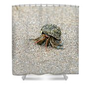 Herman The Hermit Shower Curtain