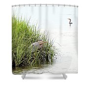 Heron And Cormorant Shower Curtain