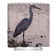 Heron And Grey Water Shower Curtain