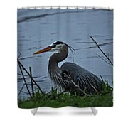 Heron At The Rock River Shower Curtain