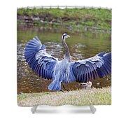 Heron Bank Landing Shower Curtain