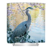 Heron - Beacon Hill Park Shower Curtain