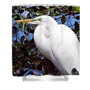 Heron Deep Contemplation Shower Curtain