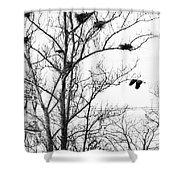 Heron Shower Curtain