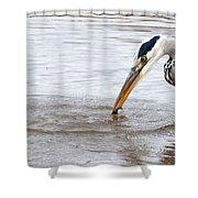Heron Fishing Shower Curtain