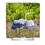 Heron On The Rise Shower Curtain