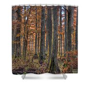 Heron Pond Dawn Shower Curtain