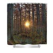 Heron Pond Sunrise Shower Curtain by Steve Gadomski