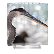 Heron Searching Shower Curtain