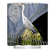 Heron Show Off Shower Curtain
