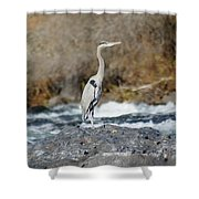 Heron The Rock Shower Curtain