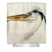Heron With A Fish Shower Curtain