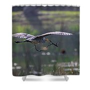 Heron With Nesting Material Shower Curtain