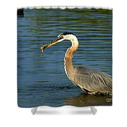 Herons Catch Shower Curtain