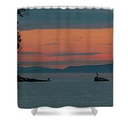 Herons In The Distant At Semiahmoo Bay At Dusk Shower Curtain