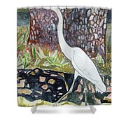 Herron Shower Curtain
