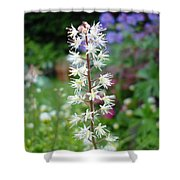 Heucharella - Fairy Bells Shower Curtain