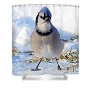 Hey Are You Talking To Me? Shower Curtain