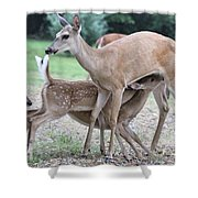 Hey, Can I Have Some? Shower Curtain