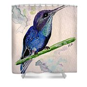 hHUMMINGBIRD 2   Shower Curtain