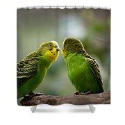 Hi Gorgeous Shower Curtain