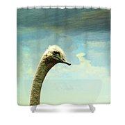 Hi, I Am The Ostrich Shower Curtain