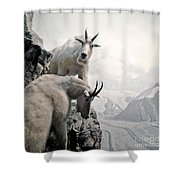 Hi We Are The Mountain Goats Shower Curtain